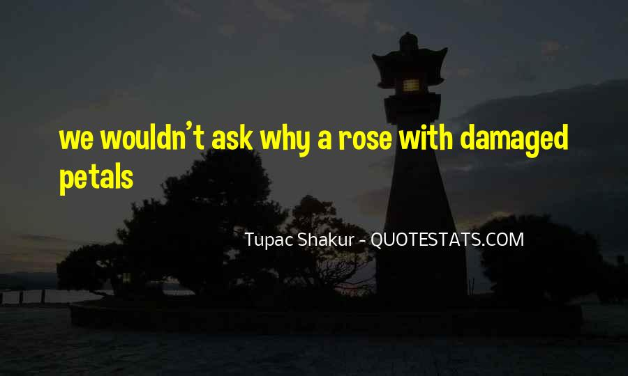 Quotes About Rose Petals #439358