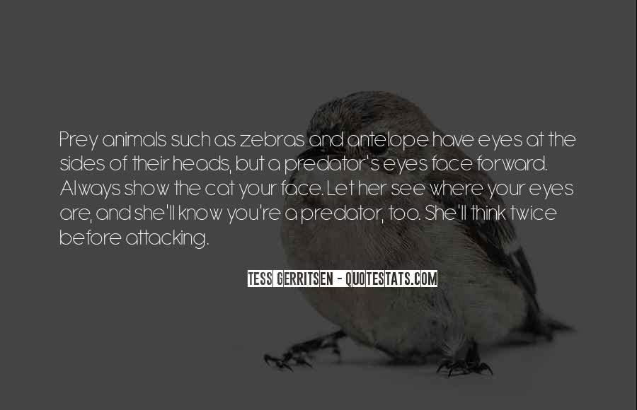 Quotes About A Cat's Eyes #1803875