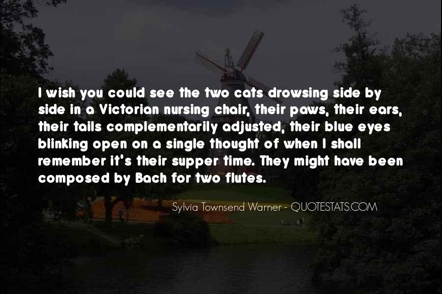Quotes About A Cat's Eyes #312403