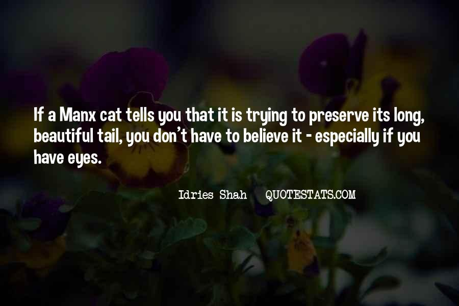 Quotes About A Cat's Eyes #387595