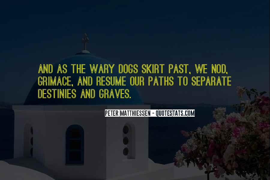 Quotes About Two Paths #114142