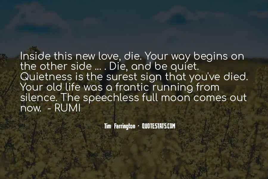 Quotes About Self Love Rumi #23210