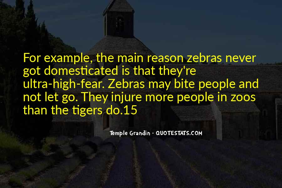 Quotes About Zebras #1239420