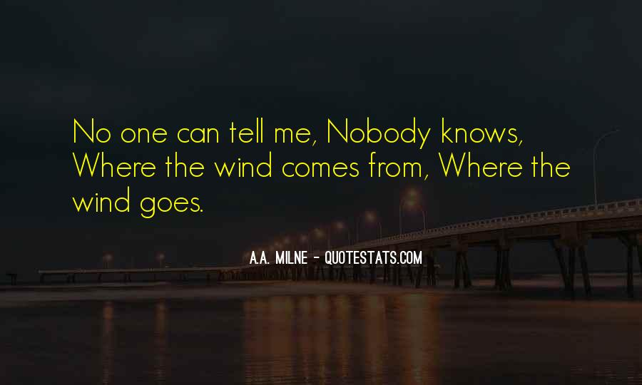 Quotes About No One Knows Me #1482239