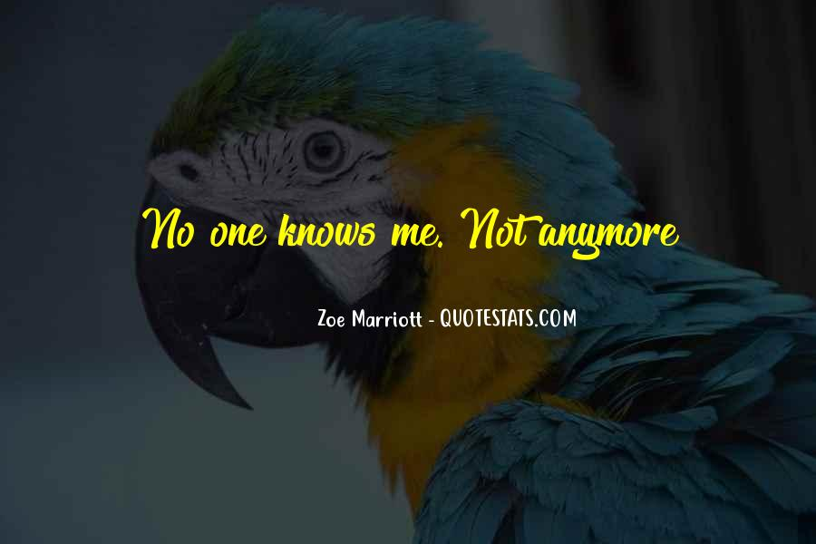 Quotes About No One Knows Me #990023