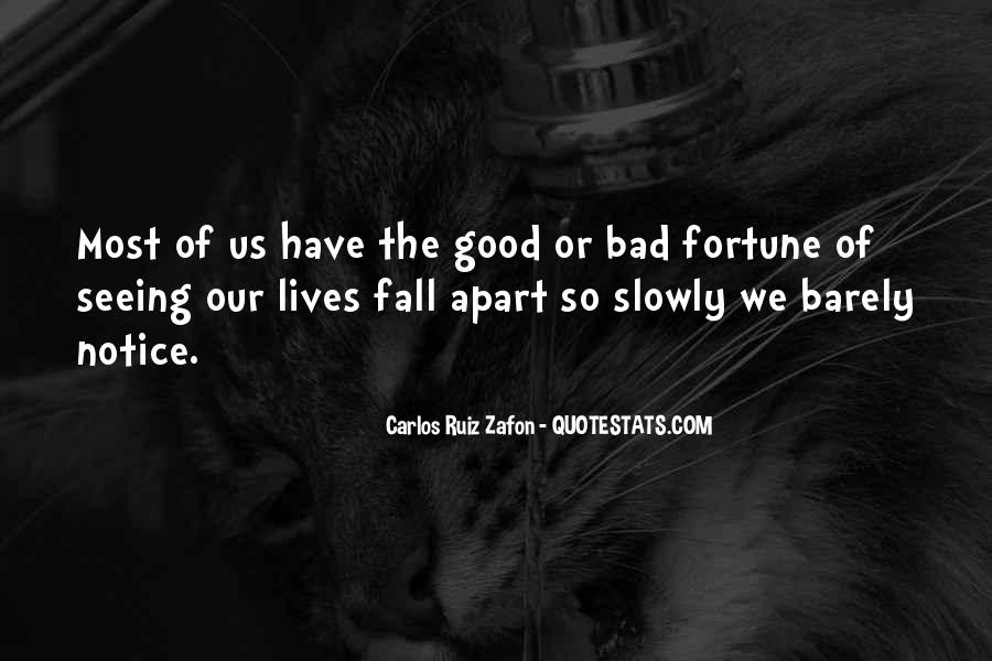 Quotes About Seeing Good In Others #139240