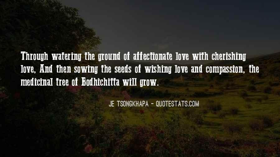 Quotes About Seeds Of Love #1331291