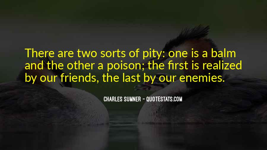 Quotes About Friends Enemies #209588