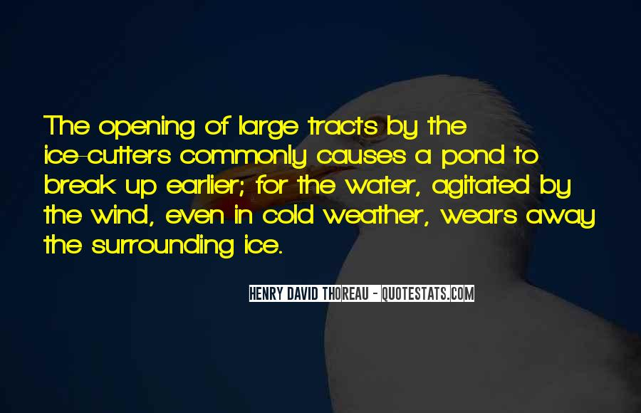 Quotes About Ice Water #592063