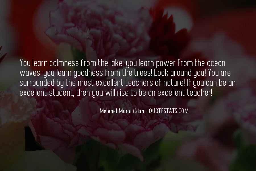 Quotes About Excellent Teachers #612692