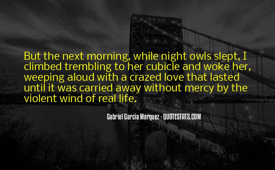 Quotes About Violent Love #224020