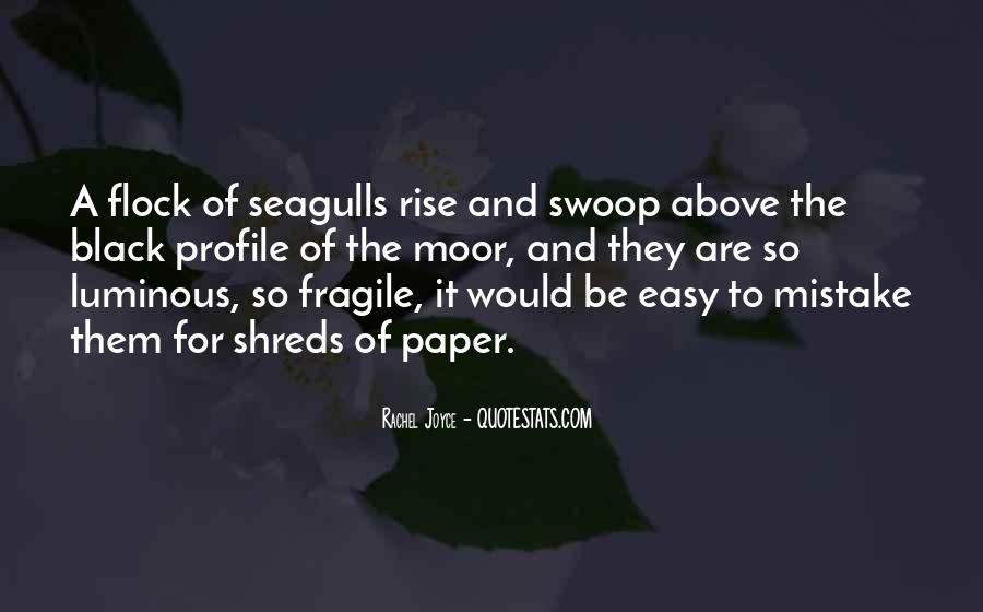 Quotes About Seagulls #1017063