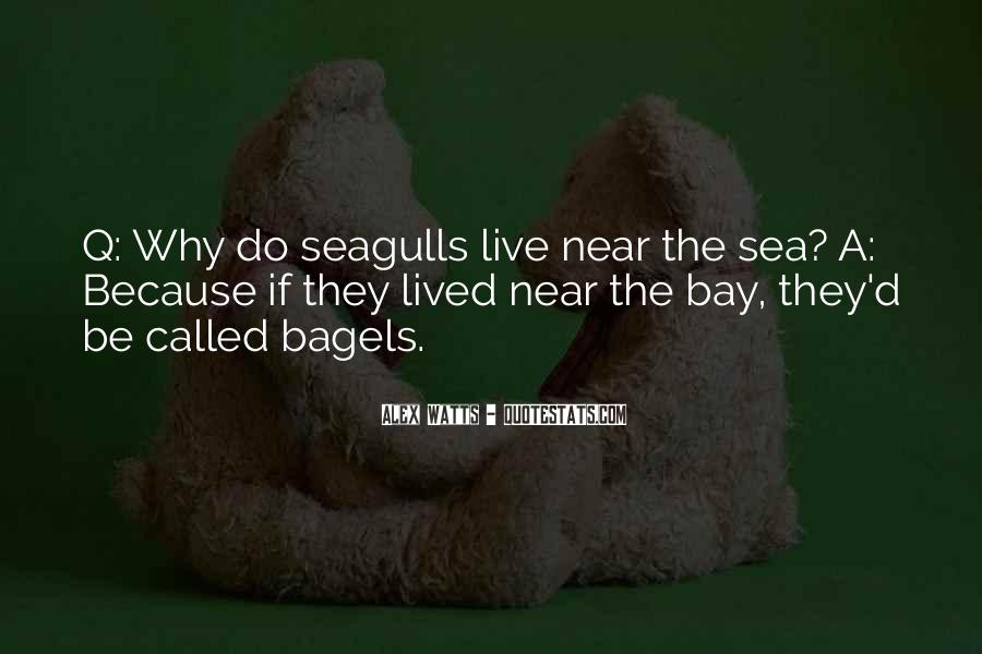 Quotes About Seagulls #348619