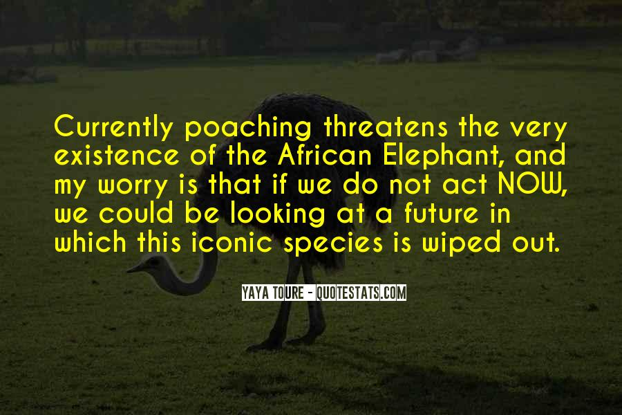 Quotes About African Elephants #1364136