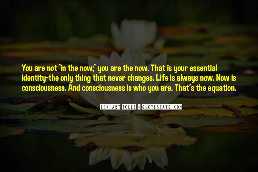 Quotes About Never Changing #613801