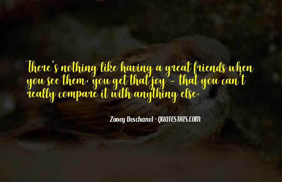 Quotes About Having A Great Friend #292555