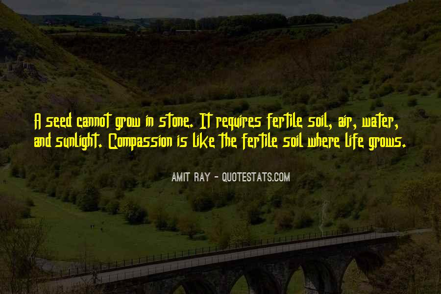 Quotes About Life Life Is Like #4610