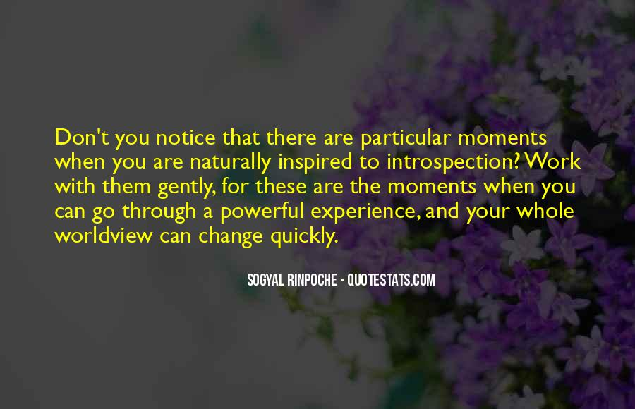 Quotes About Experience And Change #834815