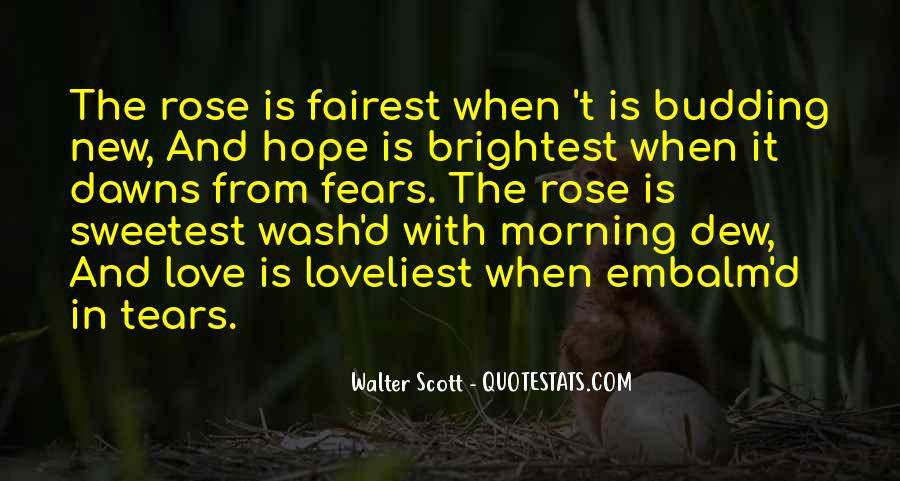 Quotes About Fear Of New Love #1001512
