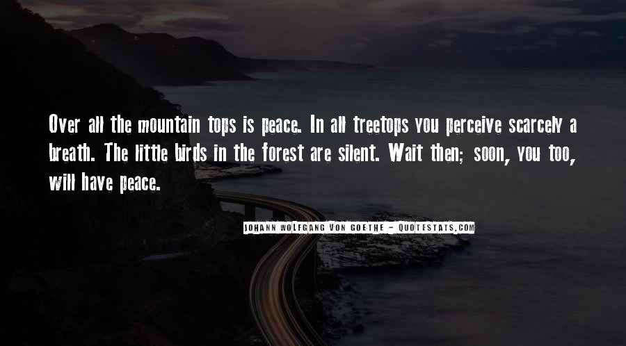 Quotes About Treetops #901450