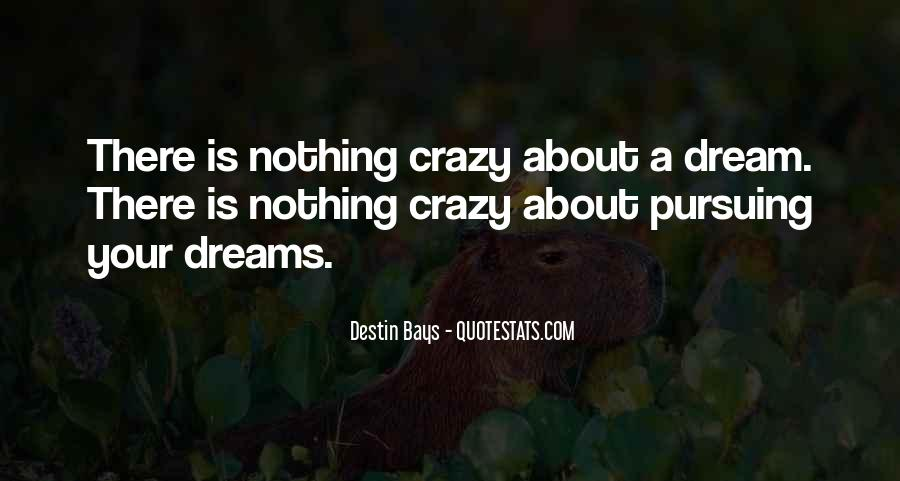 Quotes About Pursuing Happiness #1288680