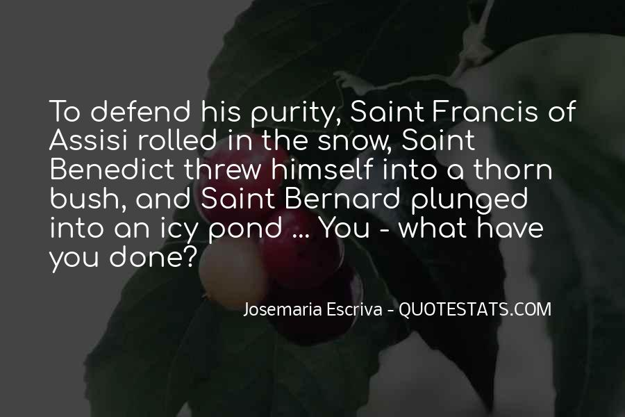 Quotes About Saint Francis Of Assisi #1269304