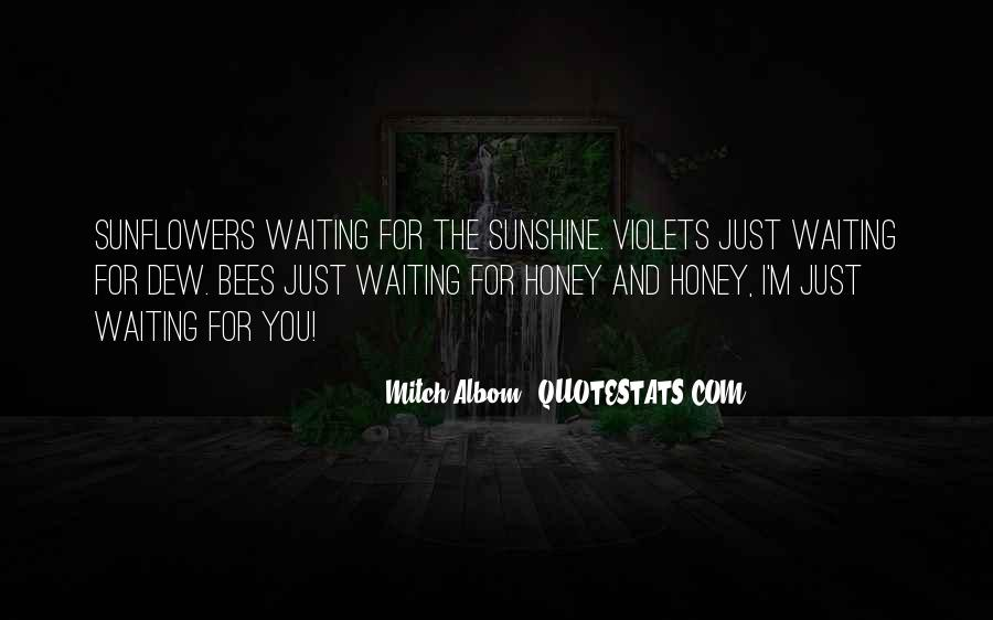 Quotes About Sunflowers #289969
