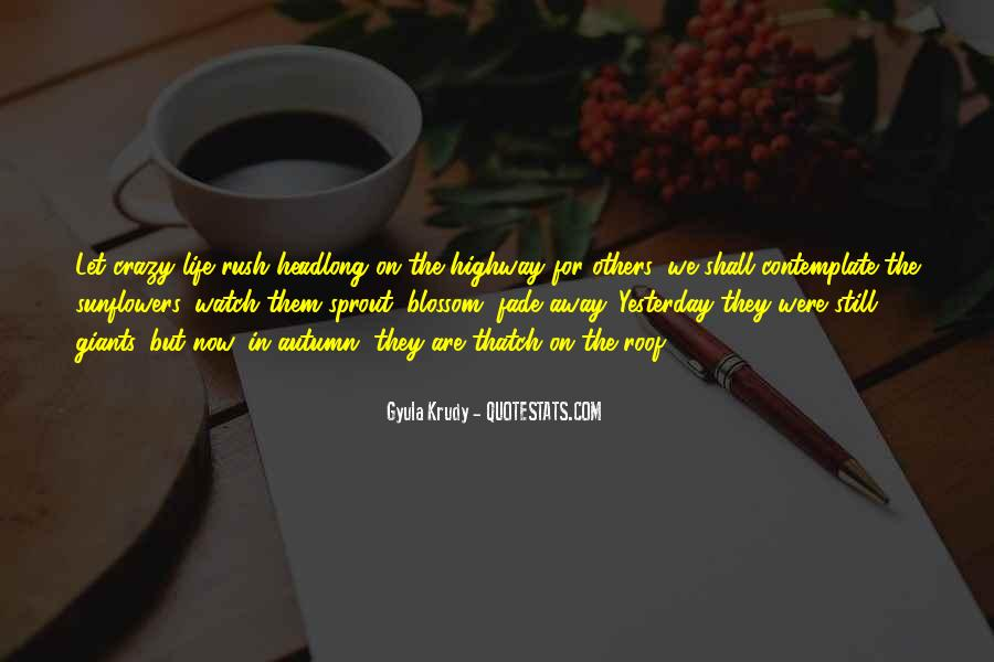 Quotes About Sunflowers #54424
