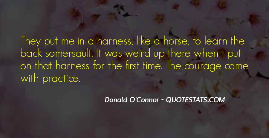 Quotes About Somersault #1571043