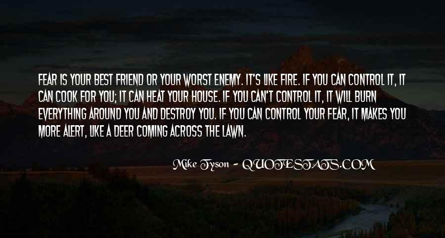Quotes About Friend And Enemy #69888