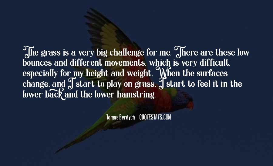 Quotes About A Big Challenge #206736