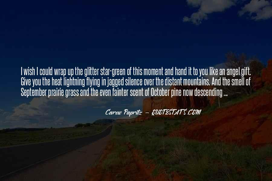 Quotes About Moment Of Silence #247076