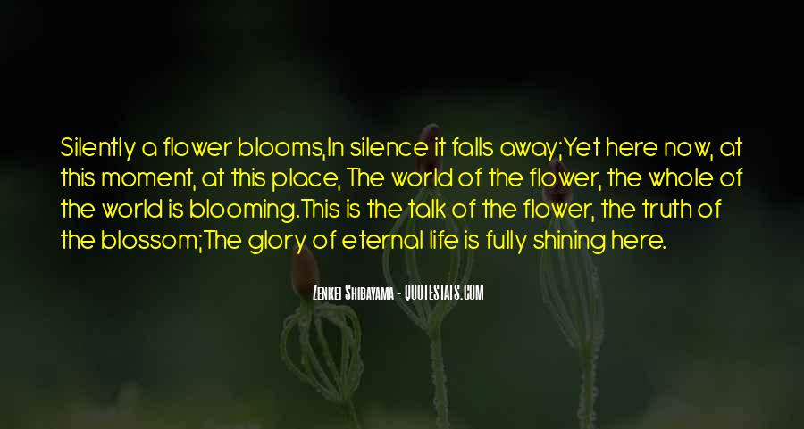 Quotes About Moment Of Silence #687607