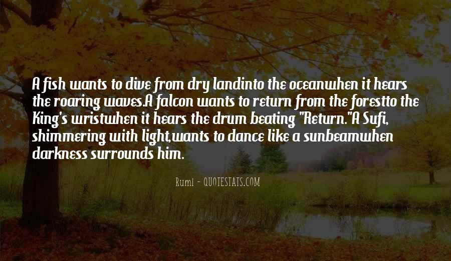 Quotes About Beating To Your Own Drum #211579