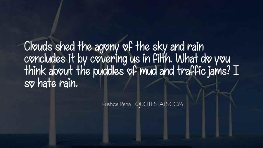 Quotes About Mud Puddles #294264