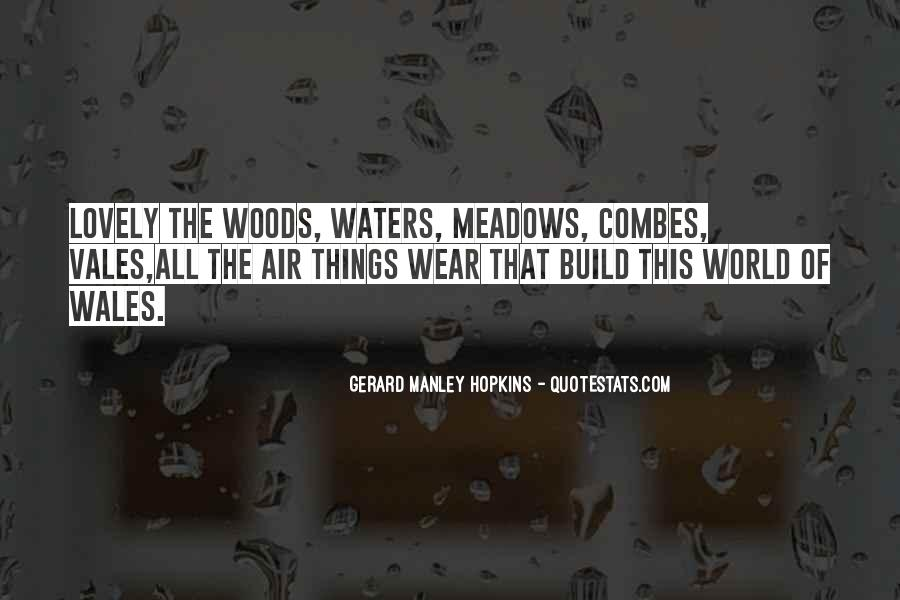Quotes About Wales #321436
