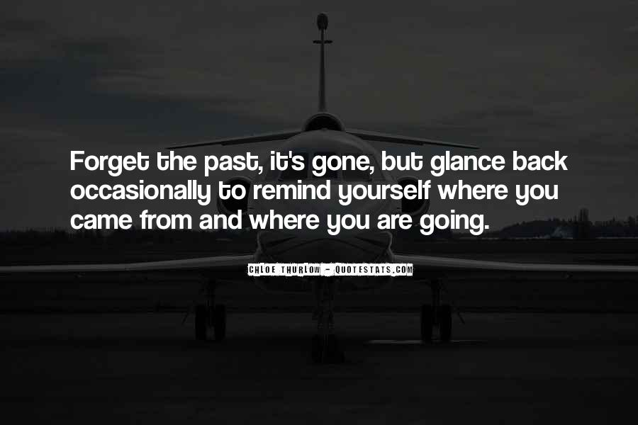 Quotes About Looking Back And Looking Forward #60216
