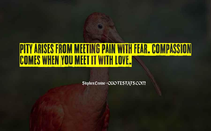 Quotes About Meeting Your Love #321610