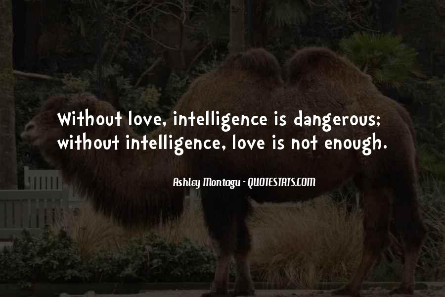 Quotes About Love Is Dangerous #462703