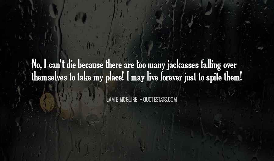 Quotes About Things Falling Into Place #331804