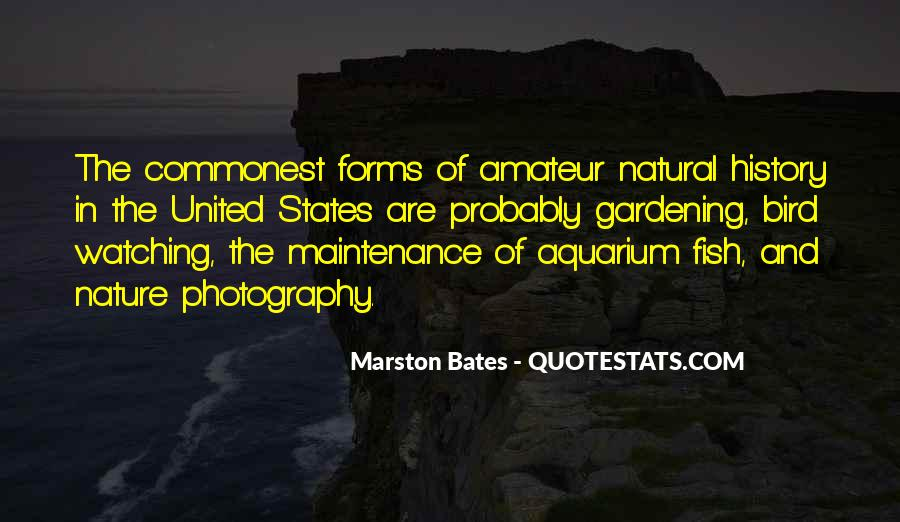 Quotes About Natural Forms #1055956
