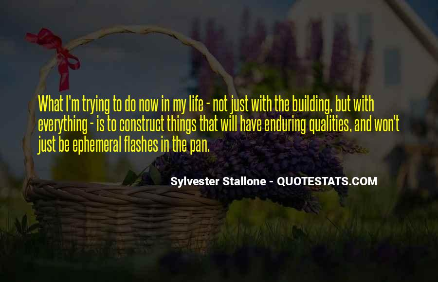 Quotes About Trying To Do Everything #310752