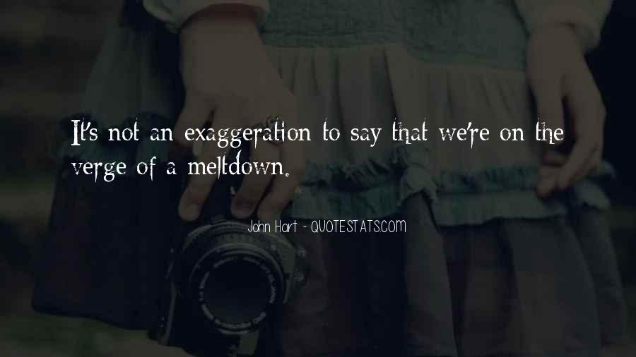 Quotes About Having A Meltdown #740606
