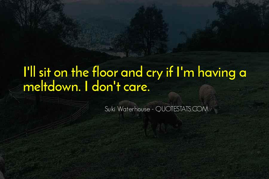 Quotes About Having A Meltdown #77777