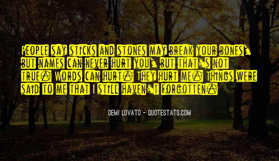 Quotes About Sticks And Stones #1264027