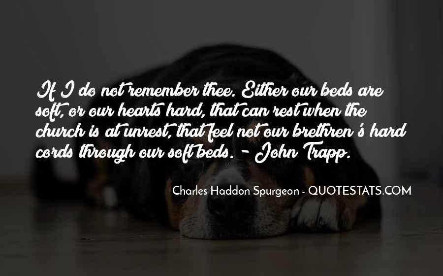 Quotes About Brethren #177358
