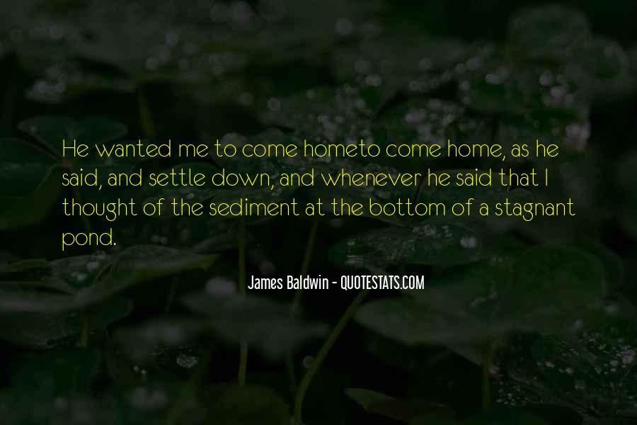 Quotes About Sediment #56502