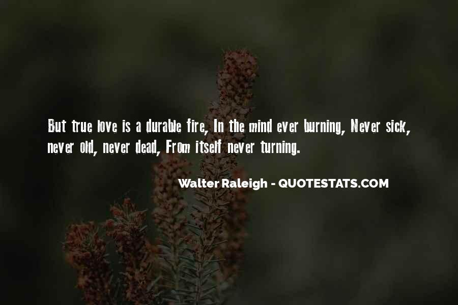 Quotes About Burning #219