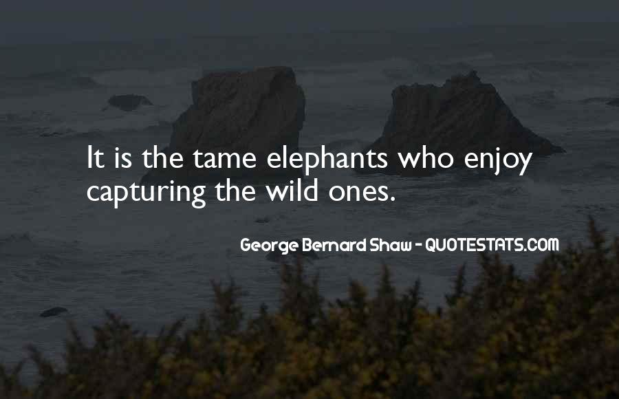 Quotes About Criminal Minds #750549