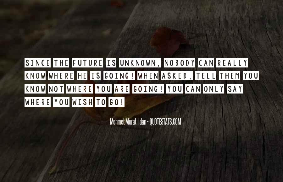 Quotes About Not Know The Future #932586